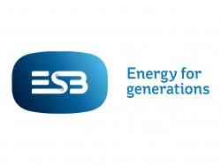 Electricity Supply Board (ESB)